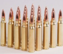 .223 FMJ bunch